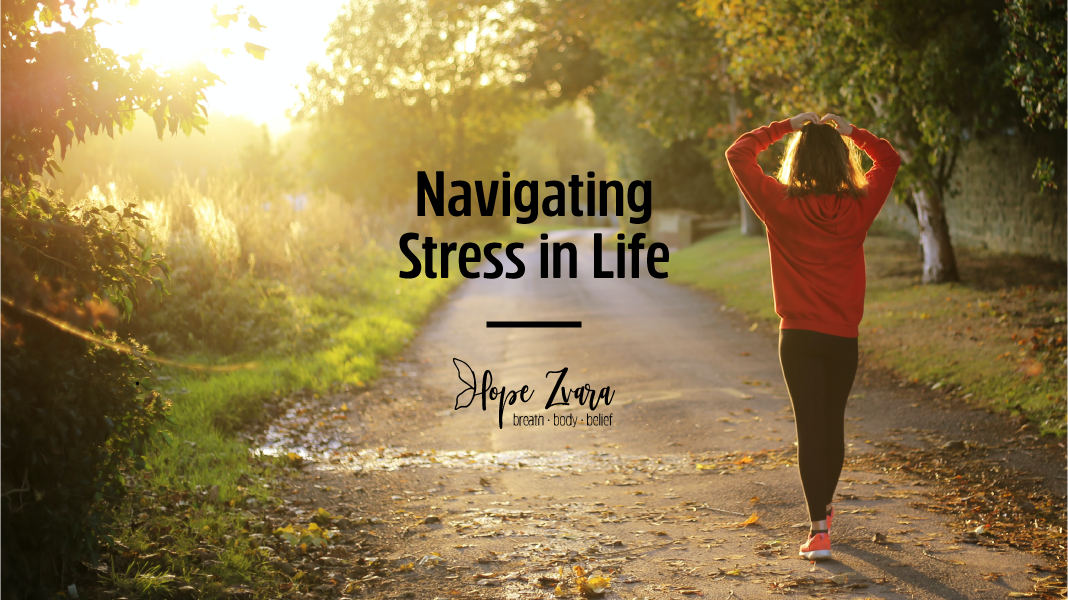 Navigating Stress In Life