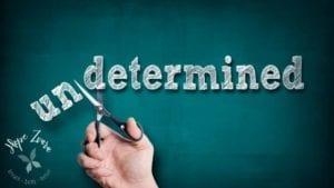 Determined Blog Post Hope Zvara